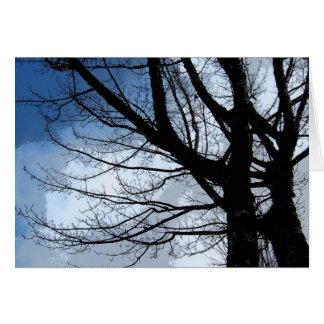 Cartão Arte dos céus azuis e da árvore de amieiro