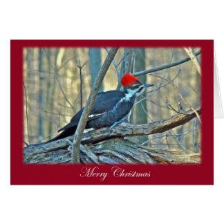Cartão Artigos do Feliz Natal do pica-pau de Pileated
