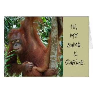 Cartão Artistas animais