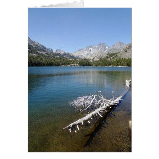 Cartão Árvore branca no lago shadow, vazio para dentro