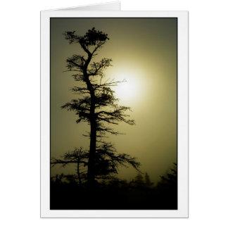 Cartão Árvore da cimeira