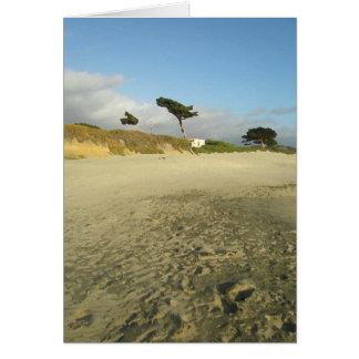 Cartão Árvore da praia