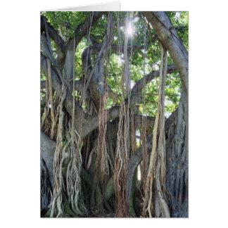 Cartão Árvore de Banyan