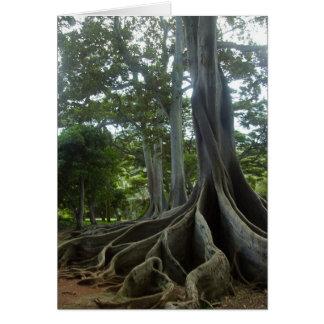 Cartão Árvore de Kauai de Jurassic Park (ovos)