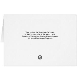 Cartão Árvore de larício