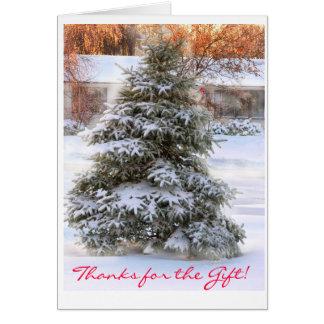 Cartão árvore de Natal no por do sol, obrigados para o