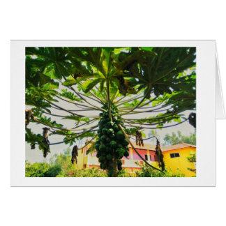 Cartão Árvore de papaia