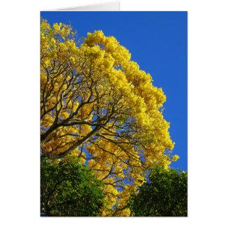 Cartão Árvore do ouro