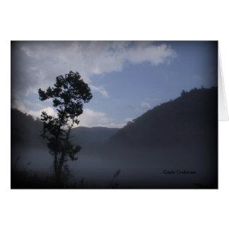 Cartão Árvore perto da represa de Fontana, North Carolina