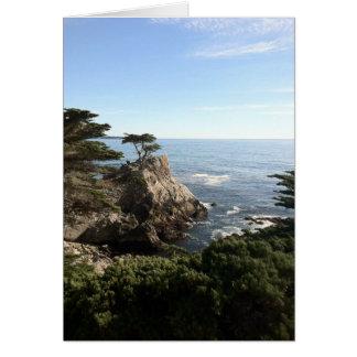 Cartão Árvore solitária