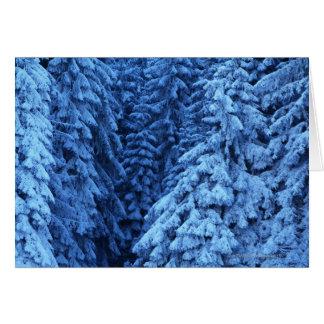 Cartão árvores cobertos de neve