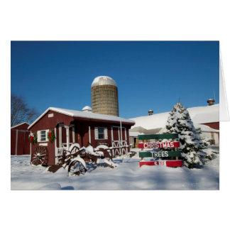 Cartão Árvores de Natal de Nova Inglaterra