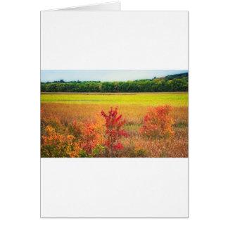 Cartão Árvores do outono em grandes prados