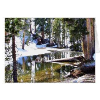 Cartão Árvores Forrests dos lagos