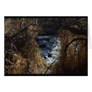 Cartão Árvores que abrem a um córrego da água