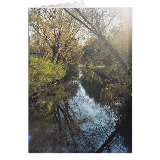 Cartão Árvores refletindo da água