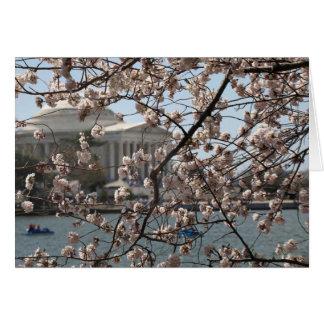 Cartão As flores de cerejeira na flor no Washington DC