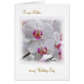 Cartão As orquídeas brancas - obrigado serir de mãe para