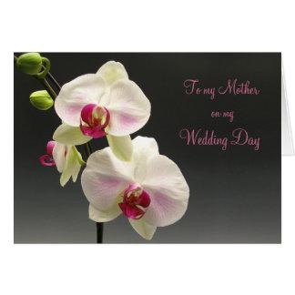 Cartão As orquídeas cor-de-rosa brancas agradecem-lhe
