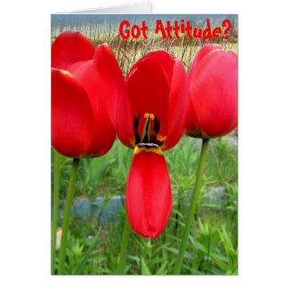 Cartão As tulipas obtiveram a atitude
