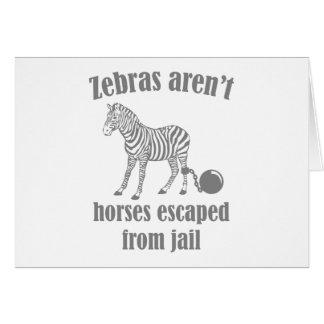 Cartão As zebras não são cavalos escapados da cadeia