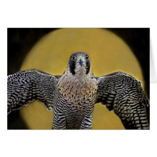 Cartão Ascensão da lua do falcão de peregrino