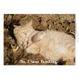 Cartão Assim, eu estava pensando… (Catnap)