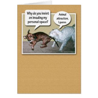 Cartão Atração animal engraçada