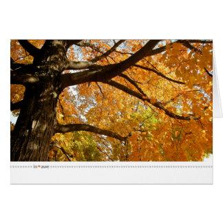Cartão aumentação dos in*awe_oranges