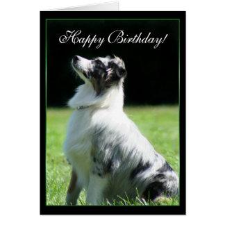 Cartão australiano do pastor do feliz aniversario