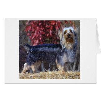Cartão australiano do vazio do cão de Terrier de