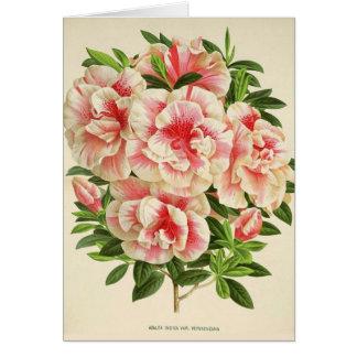 Cartão Azálea cor-de-rosa & branca