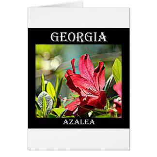 Cartão Azálea de Geórgia