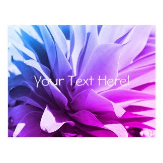 Cartão azul cor-de-rosa roxo da planta do