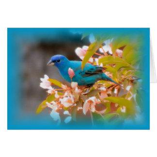 Cartão Azul da estamenha de índigo