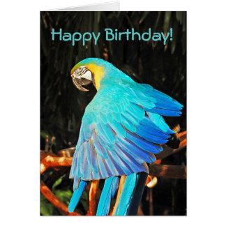 Cartão azul do aniversário do papagaio do macaw