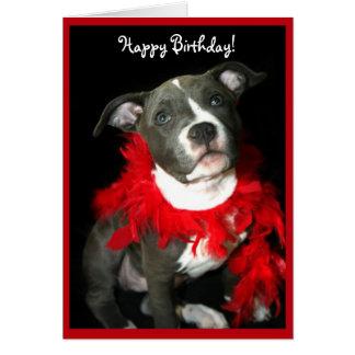 Cartão azul do filhote de cachorro de Pitbull do