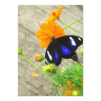 Cartão azul e preto do convite da borboleta