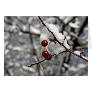 Cartão Bagas do inverno