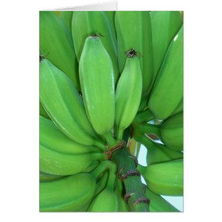 Cartão Bananas verdes havaianas