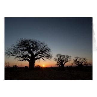 Cartão Baobabs sagrados