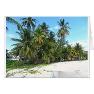 Cartão Barbados 2010 279