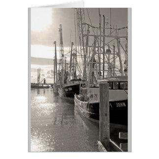 Cartão Barcos do camarão de Biloxi na doca