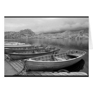Cartão Barcos tradicionais no lago sangrado, Slovenia