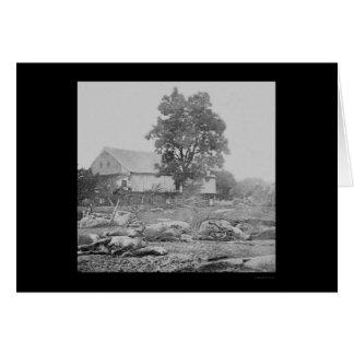 Cartão Barnyard e cavalos em Gettysburg 1863