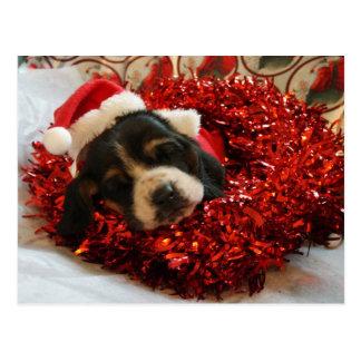 Cartão Basset Hound do Natal
