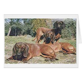 Cartão bávaro do vazio do cão de cão da montanha