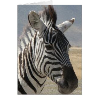 Cartão Bebê da zebra