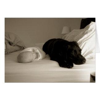 Cartão Bebê e cão