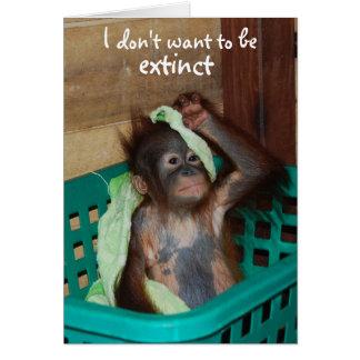 Cartão Bebê mal-humorado da conservação dos animais